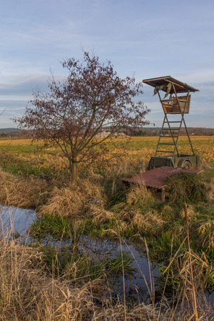 a raised hide next to a little stream photo
