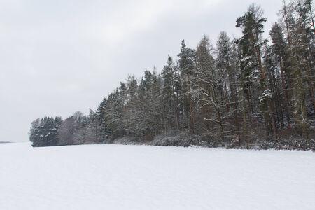 bavaria: beautiful winter landscape next to schwandorf in bavaria