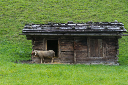 fuegen: Farmland next to Fuegen in the Zillertal in Austria, Fügen Stock Photo