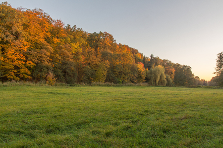Autumn landscape next to Schwandorf in bavaria with trees in fall