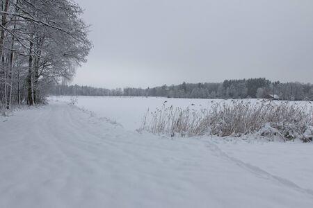 bavarian winter landscape next next to schwandorf, Charlottenhofer Weihergebiet