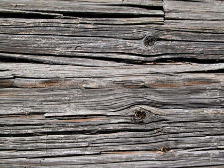 wood background III