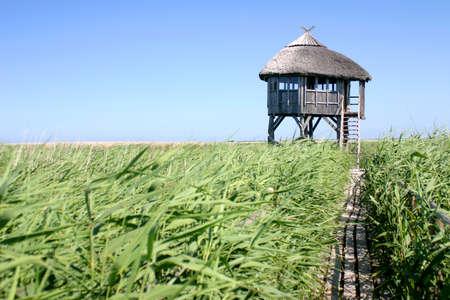 パプ ラトビアで野鳥観察家に 1 つのパス 写真素材