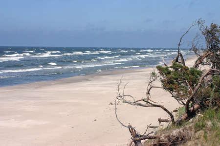 空の砂浜のビーチと嵐バルト海