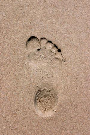 コピー スペースと砂のビーチの 1 つの足跡 写真素材
