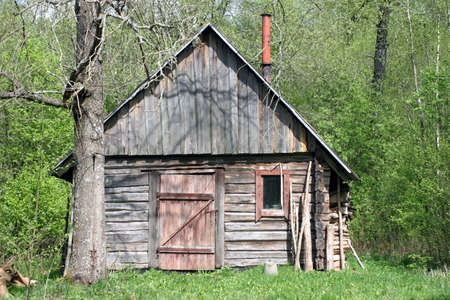 Shabby and abbandoned wooden hut in the forest at sunny summer day Stock Photo