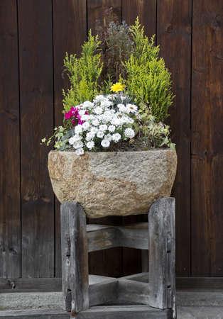 石フラワー ポットの植物や花の素敵なアレンジで