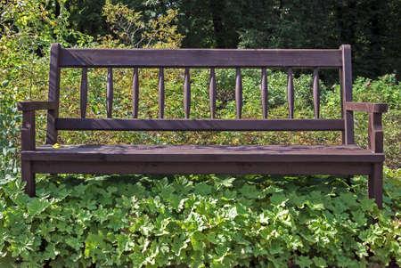 空公園のベンチに、雑草の生い茂った