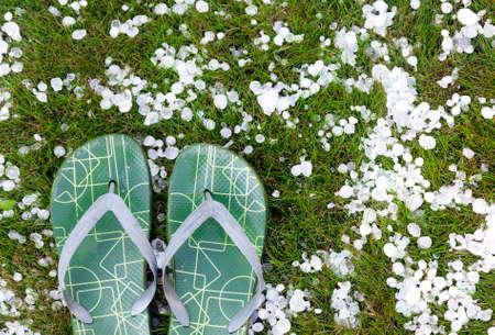 雹を伴う嵐後出身で芝生の上フリップフ ロップ