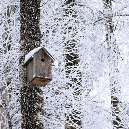 冬の木に掛かっている木製の巣箱
