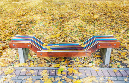 Lonely colorful wooden bench in park in the autumn with yellow maple leaves around 写真素材