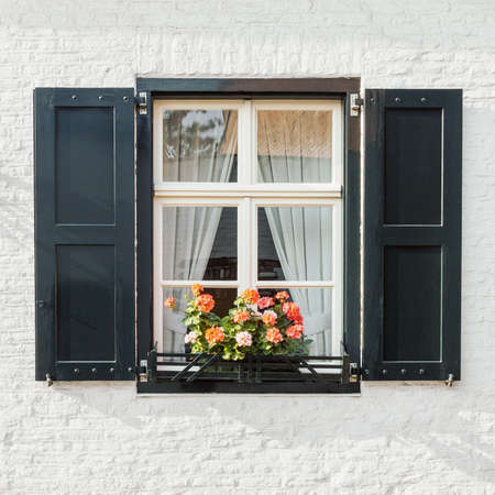 Window on white brick wall with shutters and blooming flowers pot, front view architectural detail closeup, classic style vintage window frame