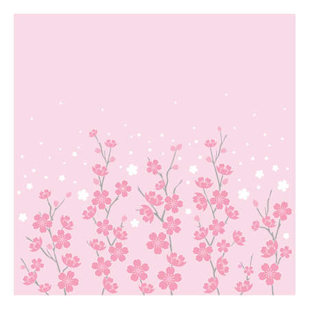 Cherry Blossoms Vector - Horizontal