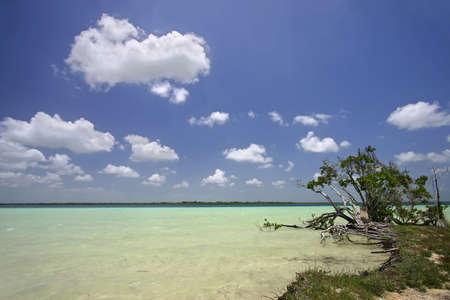 roo: Lake Bacalar, Quintana Roo, Mexico
