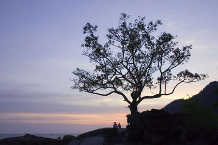 A couple relaxes together under a tree by the rocky beach at sunset at Langkawi Island, Malaysia.