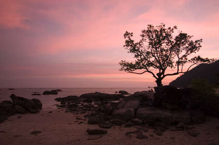 include:  Sunset by the Beach, Langkawi Island,Malaysia. Details include a couple sitting intimately together under the tree by the boulders. Stock Photo