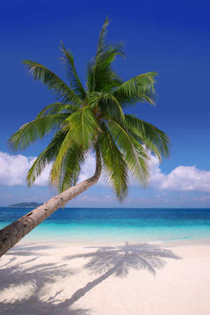 Island Paradise#2 - Pristine beaches, palm trees and clear blue water Stock Photo
