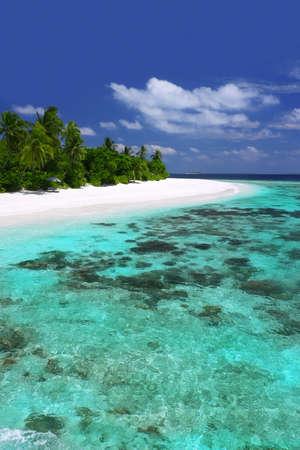 pristine coral reef: Isola tropicale con coralline incontaminate e spiagge  Archivio Fotografico