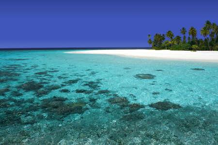 pristine coral reef: Bellissima isola con coralline incontaminate e spiagge di sabbia bianca