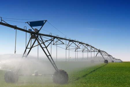 irrigation field: Crop Irrigation using the center pivot sprinkler system