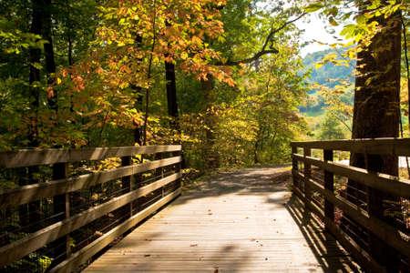 Wooden Foot Bridge in Autumn photo