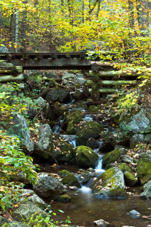 Trestle over Cascading Falls photo