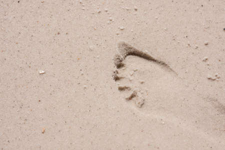 Single Footprint in Wet Sand photo