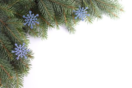 blithe: Green christmas twig with blue snowflakes. Stock Photo