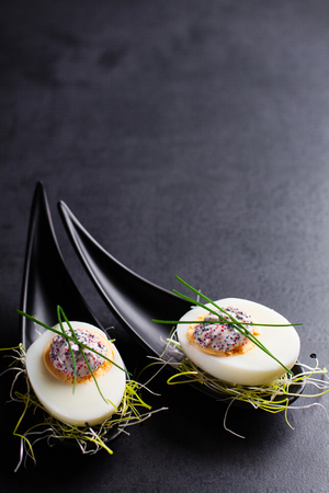 dapper: Appetizer on fingerspoon egg with caviar with copy space.