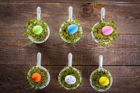 water cress: Growing cress in small bowls view from the top. Atypical Easter decoration with small eggs.