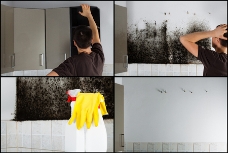 Collage of photos showing a man removing mold from behind the kitchen cabinets. 免版税图像 - 51672268
