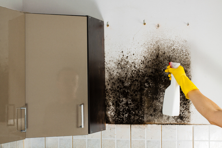 mildew: Removing mildew from kitchen cabinets, hand washer in the foreground.