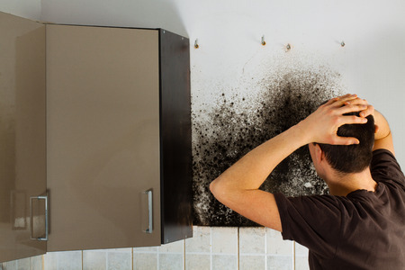 Man shocked to mold a kitchen cabinet.