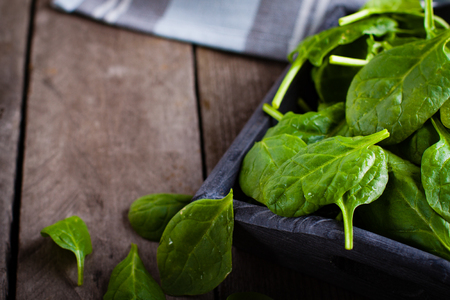 baby spinach: Baby spinach in wooden box and kitchen towel on old plank table. Stock Photo