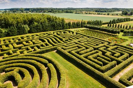 Green bushes labyrinth, hedge maze. Stock Photo