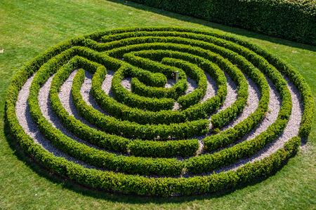 Groene struiken rond labyrint, doolhof. Bovenaanzicht.