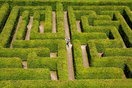 laberinto: La gente que camina en arbustos verde laberinto, laberinto de setos.