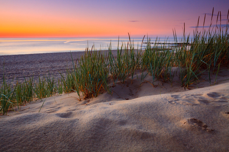 tuft: Seaside with tuft of grass, sand dunes and colorful sky at sunset. Stock Photo