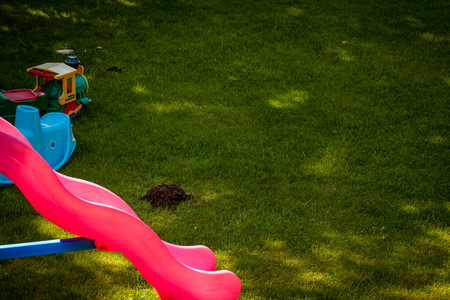 molehill: Playground on grass with molehill and copy space. Stock Photo