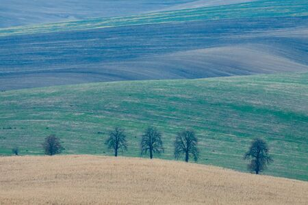 moravia: Incredible patterns on waved fields of South Moravia called the Moravian Tuscany, green and brown autumn colors. Czechia.