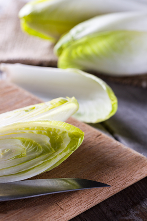 escarola: Fresh green endive for an healthy nutrition.
