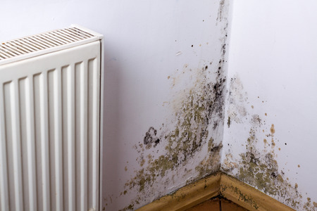 Mold and fungus problem near heater hanging on the corner.