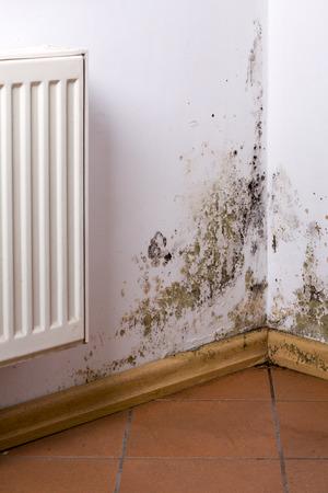 Problema de moho y hongos cerca del calentador colgando en la esquina. Foto de archivo - 70510204