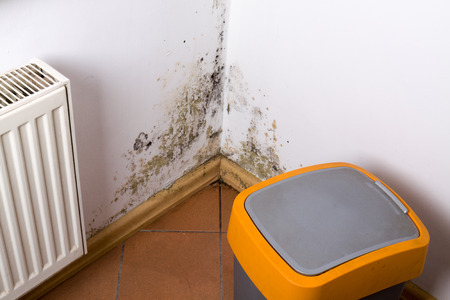Mold and fungus problem near heater hanging on the corner. Stock Photo - 70510230