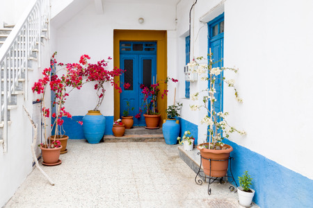 color bougainvillea: Traditional Greek facade of house with blue colours accents of window and door.