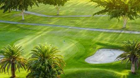 Above view on palm trees on green golf court. Banco de Imagens