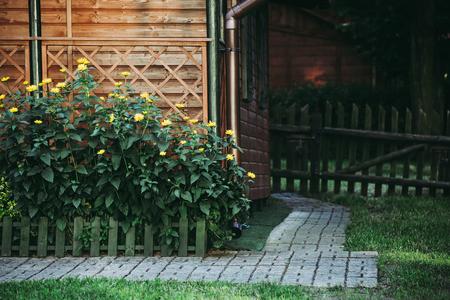 Yellow flowers on flowerbed in garden. Idyllic rural scene. Reklamní fotografie