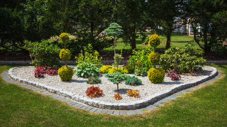Flowerbed with decorative trees, bushes and flowers in the summer garden Stock Photo
