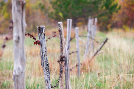 wire fence: Old rusty wire fence