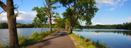 old road between ponds
